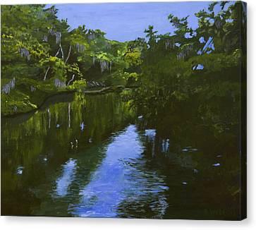Turkey Creek Canvas Print by Roger Wedegis