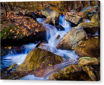 Canvas Print featuring the photograph Turkey Hill Pond Stream by Steve Zimic