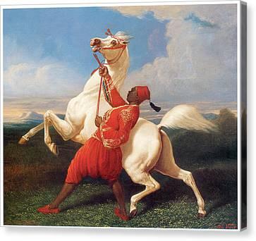 Turkish Groom Holding An Arab Stallion Canvas Print by Carle Vernet