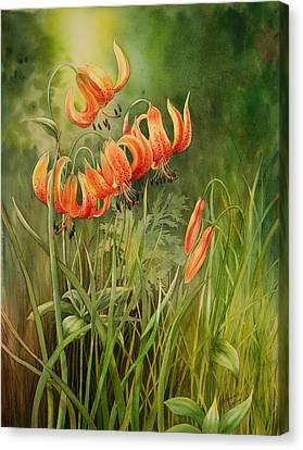 Turk's Cap Lilies Canvas Print