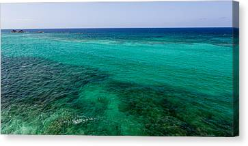 Turks Turquoise Canvas Print by Chad Dutson