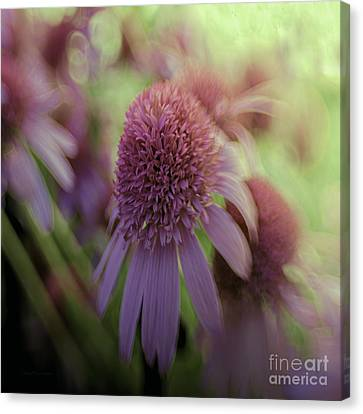 Turn Our Eyes Canvas Print by Jean OKeeffe Macro Abundance Art