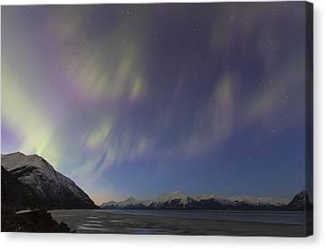Turnagain Arm Auroras Canvas Print