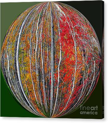 Turning Leaves Canvas Print by Scott Cameron