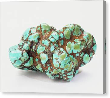 Turquoise Embedded In Iron Oxide Canvas Print by Dorling Kindersley/uig