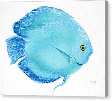 Turquoise Fish Canvas Print by Jan Matson