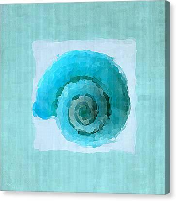 Turquoise Seashells IIi Canvas Print