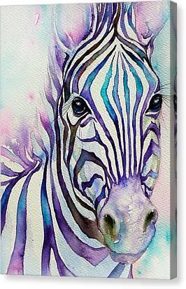 Turquoise Stripes Zebra Canvas Print