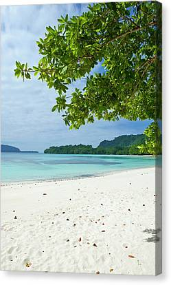 Turquoise Water And White Sand Canvas Print by Michael Runkel
