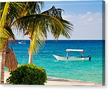 Canvas Print featuring the photograph Turquoise Waters In Cozumel by Mitchell R Grosky