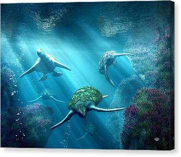 Daniel Canvas Print - Turtle Alley by Daniel Eskridge
