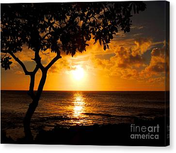 Turtle Bay Sunset Canvas Print by Kristine Merc