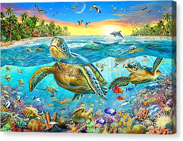 Turtle Cove Canvas Print by Adrian Chesterman