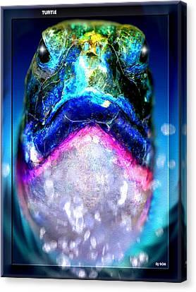 Canvas Print featuring the digital art Turtle by Daniel Janda