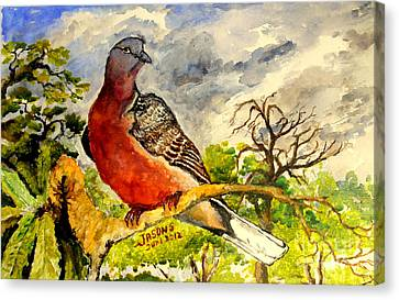 Canvas Print featuring the painting Turtle - Dove by Jason Sentuf