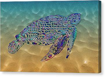 Turtle Canvas Print by Jack Zulli