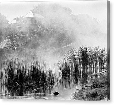 Canvas Print featuring the photograph Turtle Pond Fog by Dave Beckerman