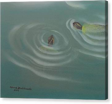 Turtle Pond IIi Canvas Print