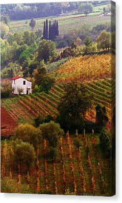 Sienna Italy Canvas Print - Tuscan Autumn by John Galbo