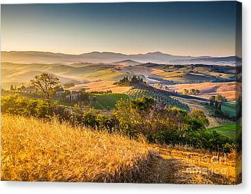 Tuscan Gold 2.0 Canvas Print by JR Photography