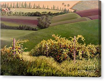 Tuscan Hills Canvas Print by Michael Swanson