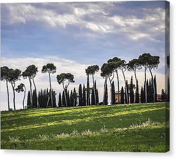 Tuscan Landscape Canvas Print by Marion McCristall