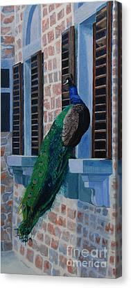 Tuscan Mascot Canvas Print by Lynne Reichhart