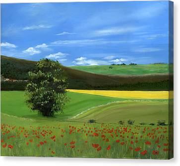 Tuscan Tree With Poppy Field Canvas Print