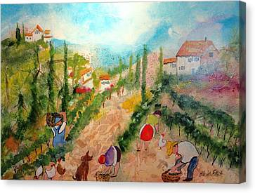 Tuscany Harvest  Canvas Print