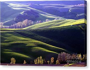 Tuscany Hills Canvas Print by Arie Arik Chen