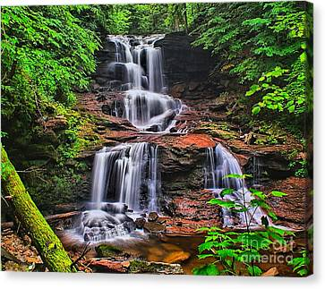 Tuscarora Falls In Spring- Ricketts Glen Canvas Print