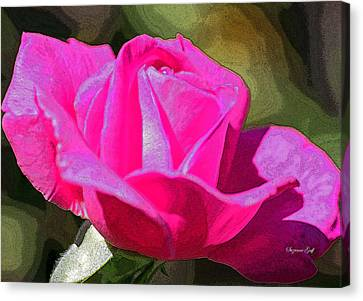 Tuscon Desert Rose Canvas Print by Suzanne Gaff