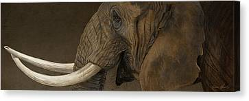 Tusker Canvas Print by Aaron Blaise