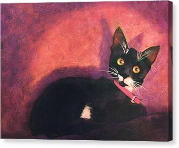 Tux Canvas Print by Blue Sky