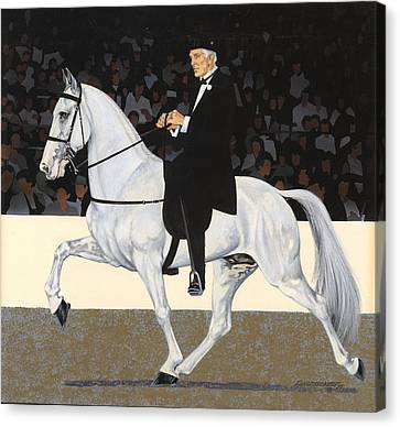 White Walking Horse In Show Canvas Print
