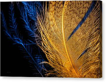 Canvas Print featuring the photograph Tweety Bird by Bob Orsillo
