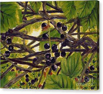Twigs Leaves And Wild Berries Canvas Print
