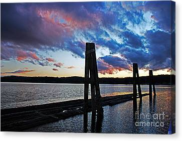 Twilight Canvas Print by Alison Tomich