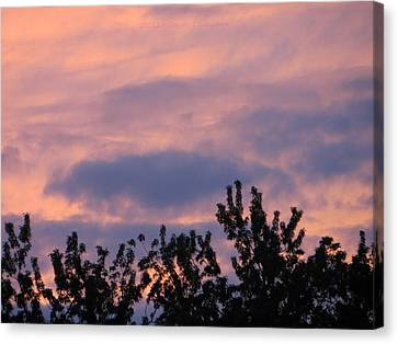 Twilight Beauty Canvas Print by Sonali Gangane