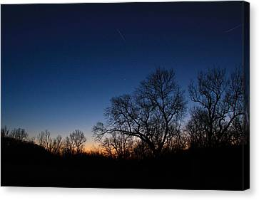 Twilight Dream Canvas Print by Julie Andel