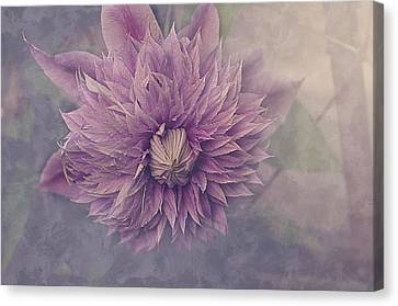 Twilight Canvas Print by Faith Simbeck