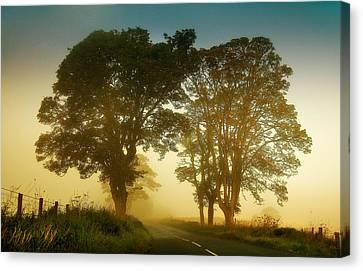 Twilight Guardians. Misty Roads Of Scotland Canvas Print by Jenny Rainbow