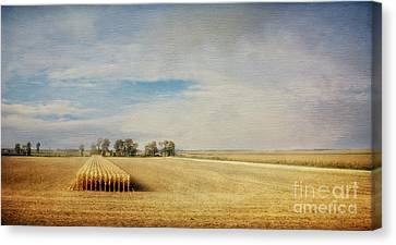 Twilight Harvest Canvas Print