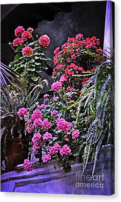 Twilight In The Courtyard Canvas Print