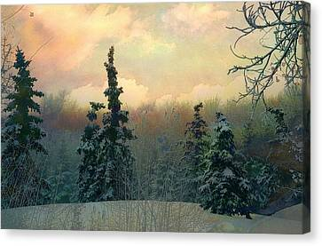 Twilight In The Forest Canvas Print by Shirley Sirois