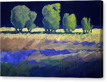 Twilight Landscape Canvas Print by Nancy Merkle