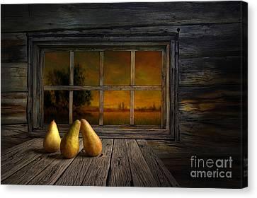Twilight Of The Evening Canvas Print by Veikko Suikkanen