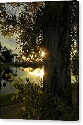Canvas Print featuring the photograph Twilight Splendor by Deb Halloran