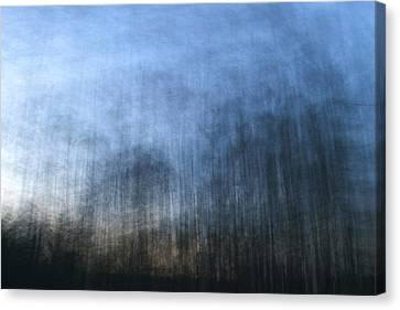 Twilight Trees Canvas Print by Brad Emerick