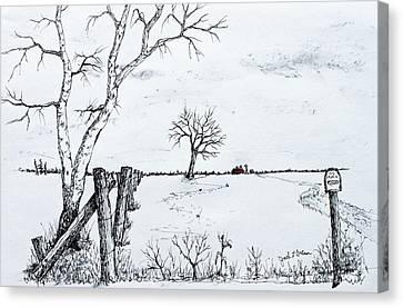 Twin Birch Fence Line Canvas Print by Jack G  Brauer